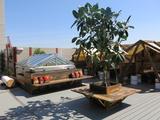 Rooftop Decks 26